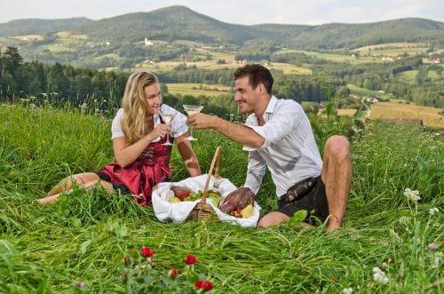 Picknicken im Grünen